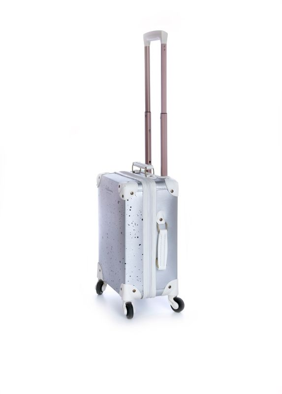 Suitcase Silver